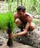 cambodian-rice-5