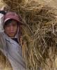 cambodian-rice-7